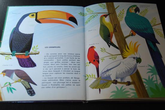 Album Les Oiseaux d'Alain Grée